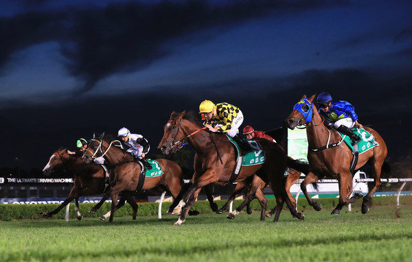 Our BlackBook: Horses Running Today & Staking Plan 14/2