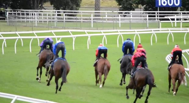 Trial Review: Horses You Must Follow From The Trials Over The Past Week 10/9