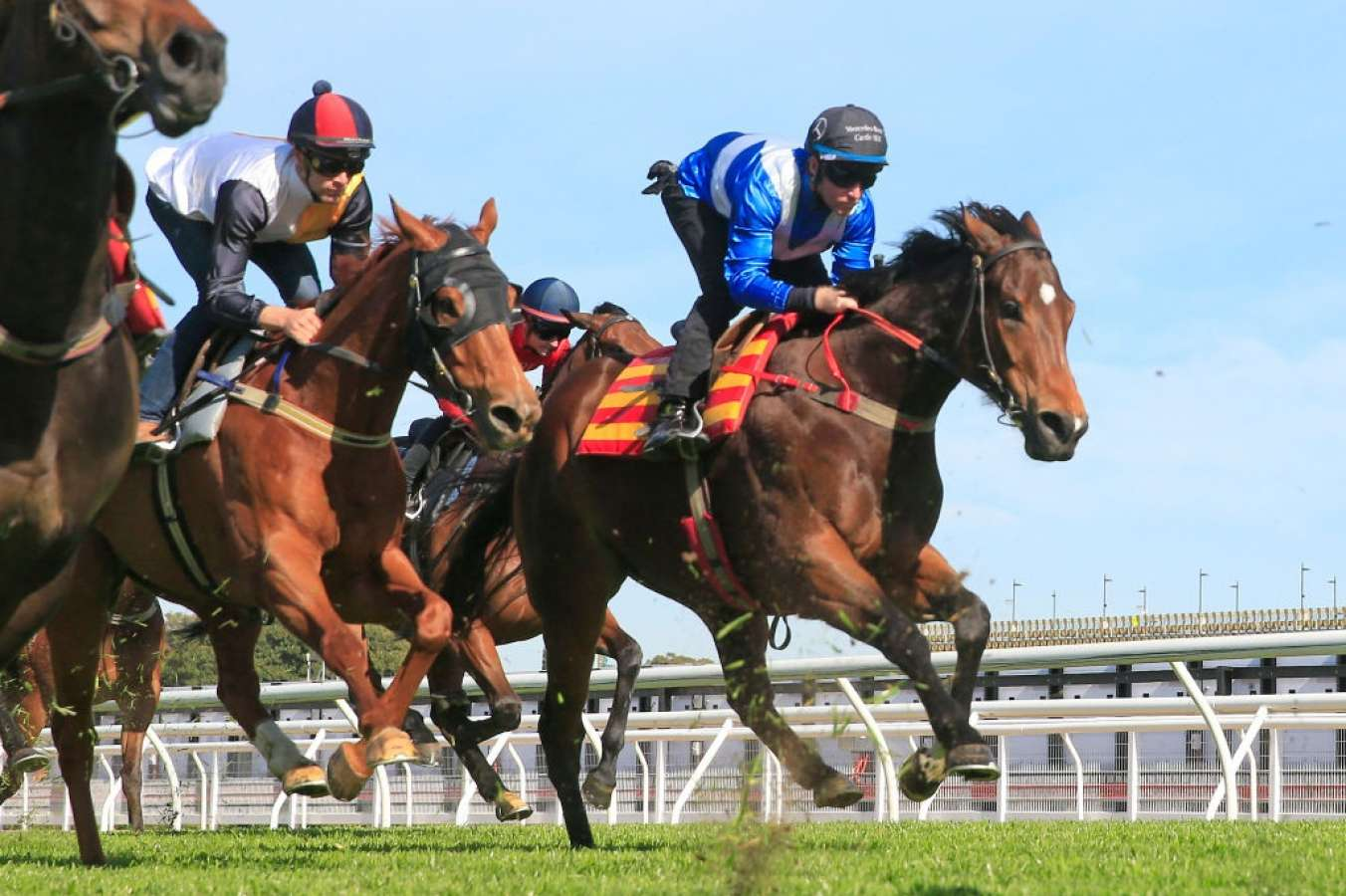Trial Review: Horses You Must Follow From The Trials Over The Past Week 24/9
