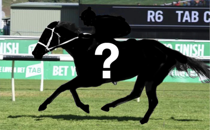 The Plunge's Saturday Review: Horses You Must Follow From Rosehill 3/3
