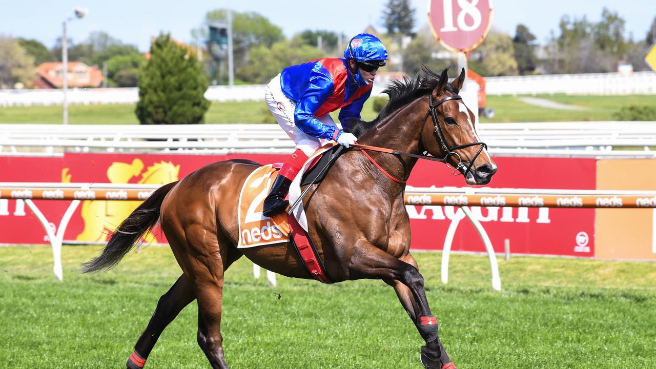 Five talking points: Cox Plate up for grabs after Zaaki flop